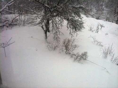 snö 2 december