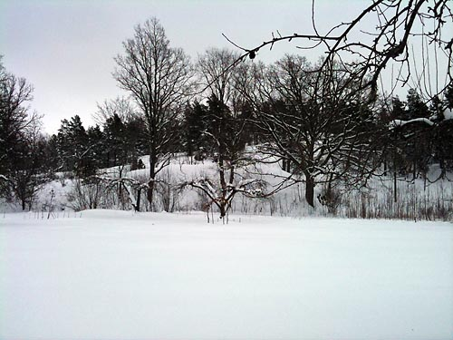 snö 6 februari