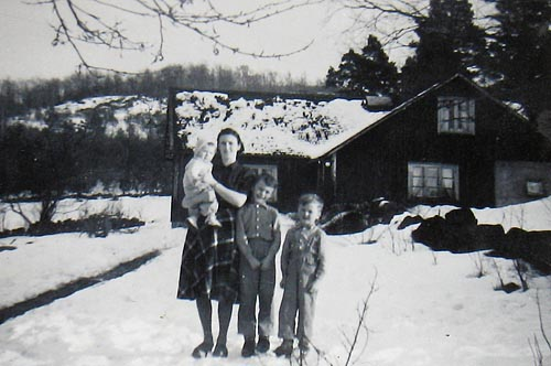 Risen_vinter1955blogg