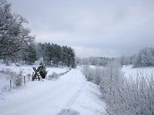 vägen till Dagsbo