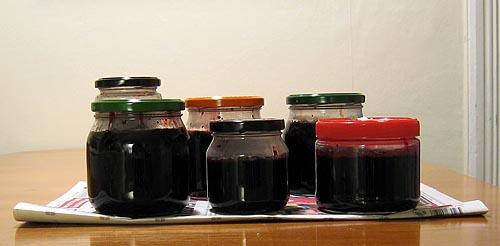 Idag blev det sex burkar blåbärssylt i varierande storlek.