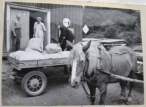 kvarnen 1966