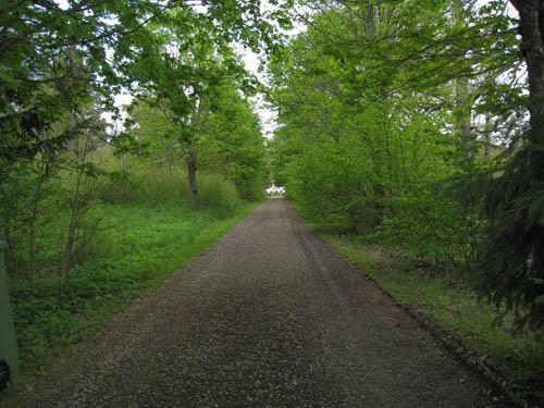 Den lummiga och långa körvägen in till slottsgården.