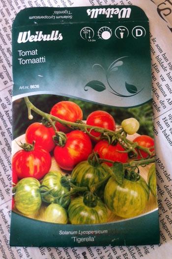 tomatgrodd3